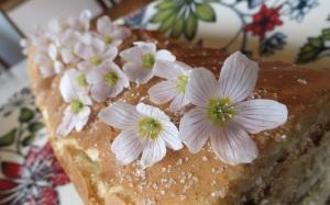 Tämän vaniljaisen omenakääretortun koristelussa huomion kiinnittää käenkaalin (eli ketunleivän) kauniit kukkaset.