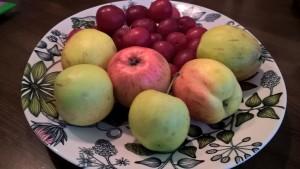 Tommolan tilan pääsynä-omenoita ja luumuja.